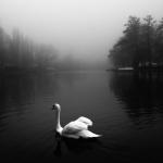 Fotobeitrag von Enrico Grote