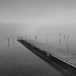 Fotobeitrag von Ralf Wagner