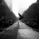 Fotobeitrag von Carsten Osterwald