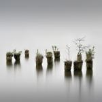 Fotobeitrag von Daniel Hohlfeld