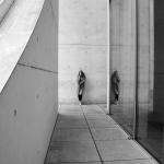 Fotobeitrag von Andreas Lederhaus